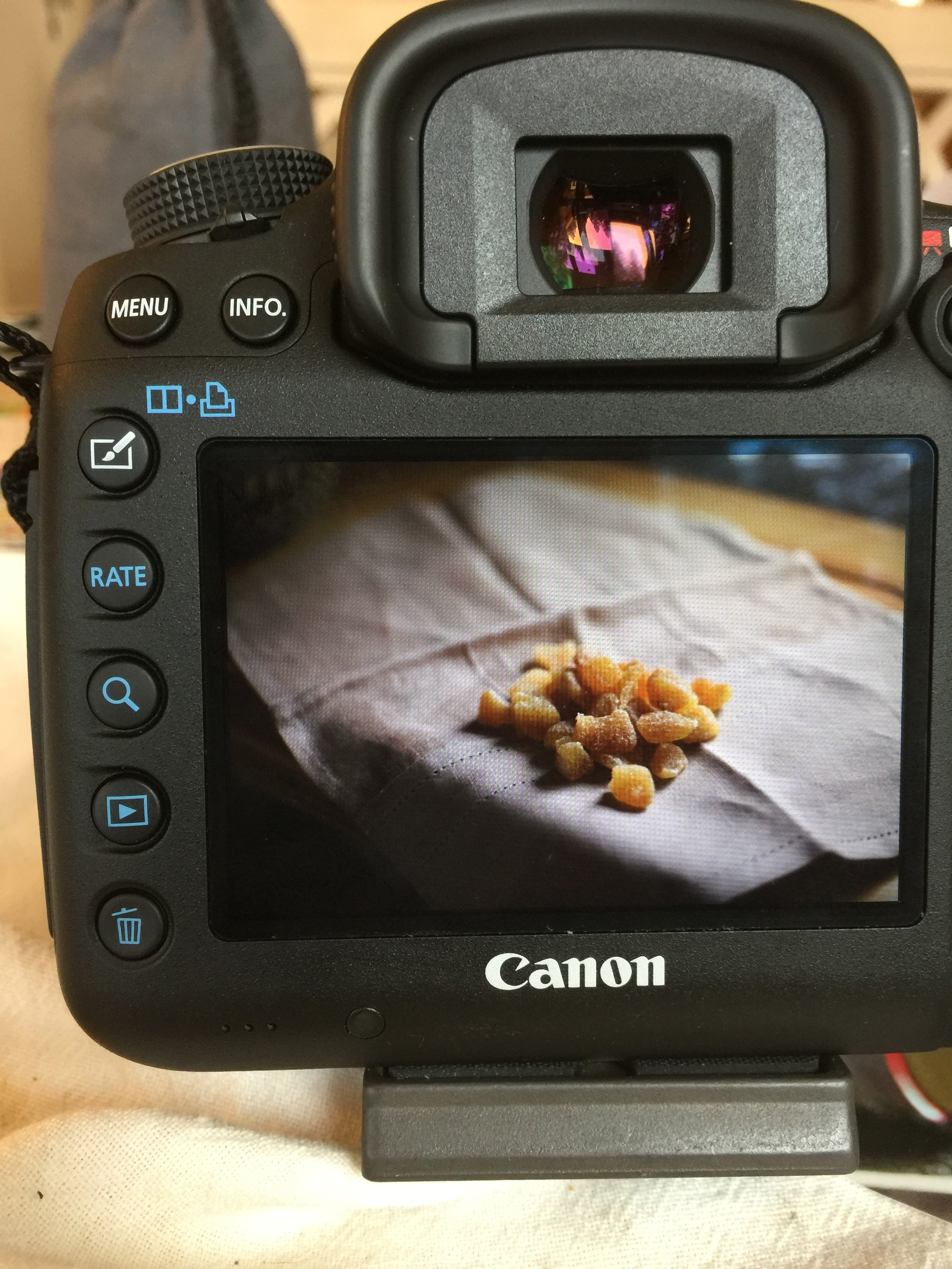a Canon camera that shows a viewfinder image of chopped ginger candy on a cloth napkin.