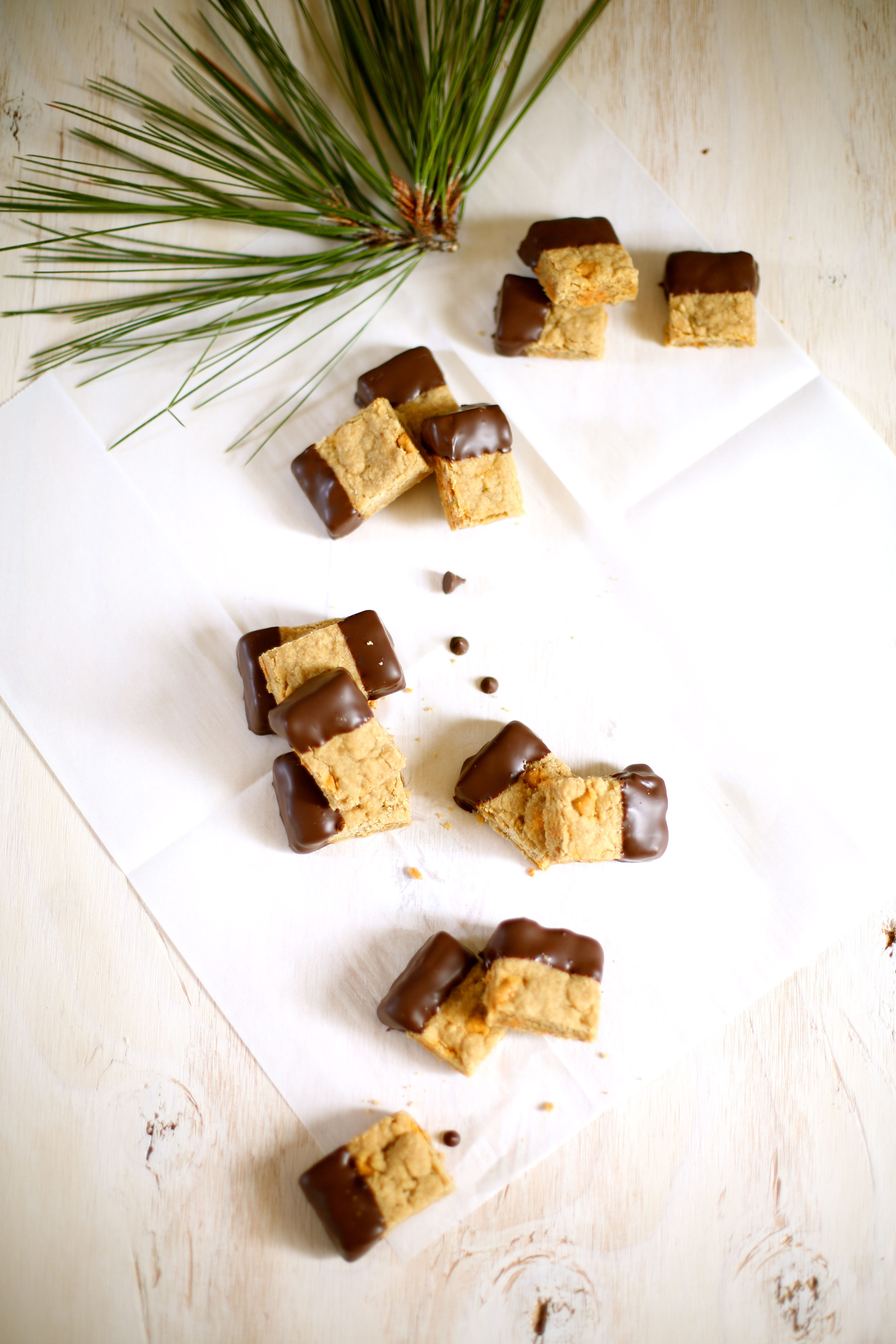 Butterscotch Shortbread Dipped in Chocolate on a white table with pine tree clippings near it on a white table
