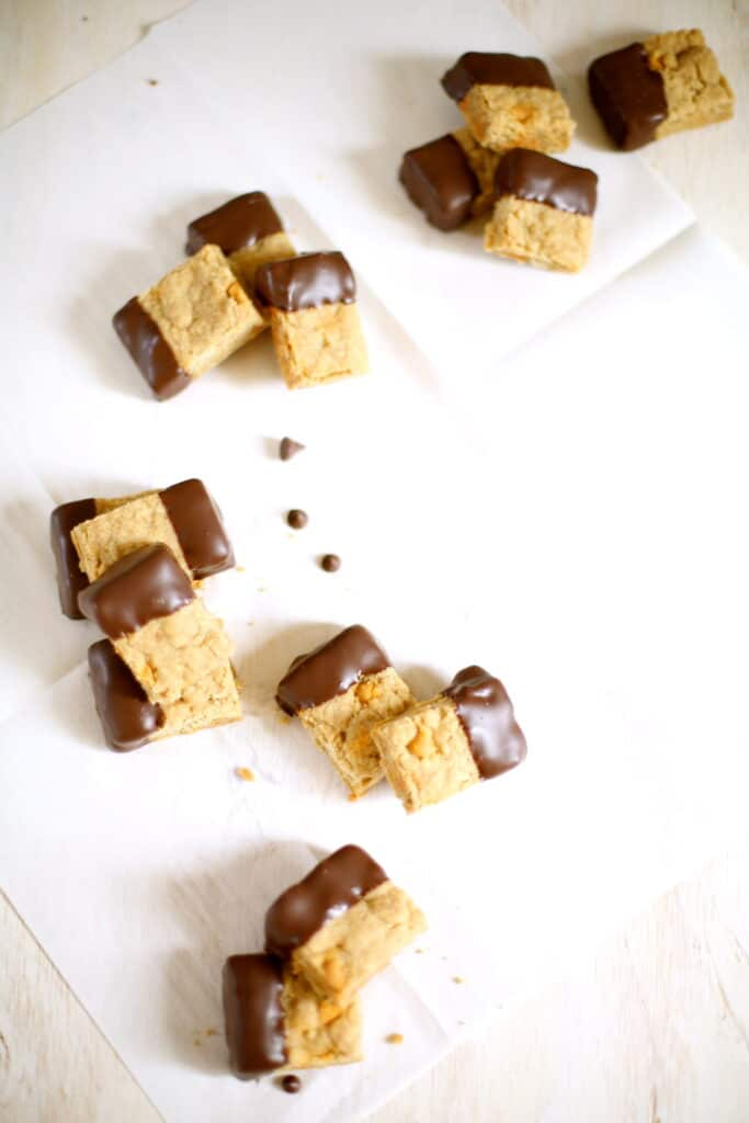Butterscotch Shortbread Dipped in Chocolate