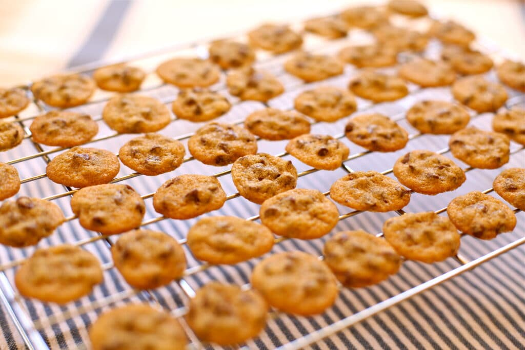 Tiny Chocolate Chip Cookies