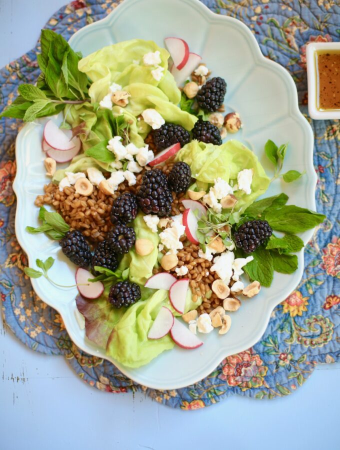Salad with hazelnuts and blackberries goat cheese grains and radish on a long blue plate on a table