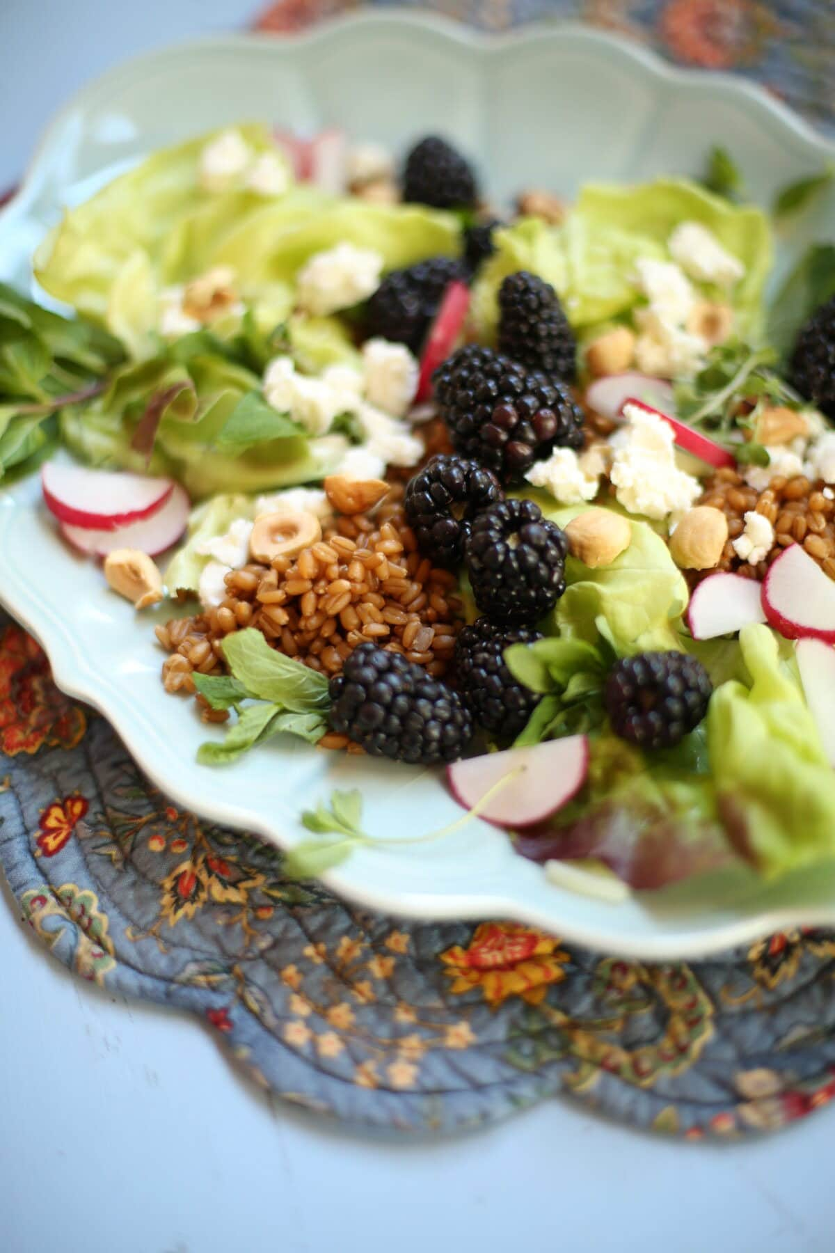 close up of balckberry salad with grains and hazlenuts and goat cheese and radish on a blue plate and table